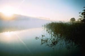 051 Dziewiszewo jeziorio dobskie swit